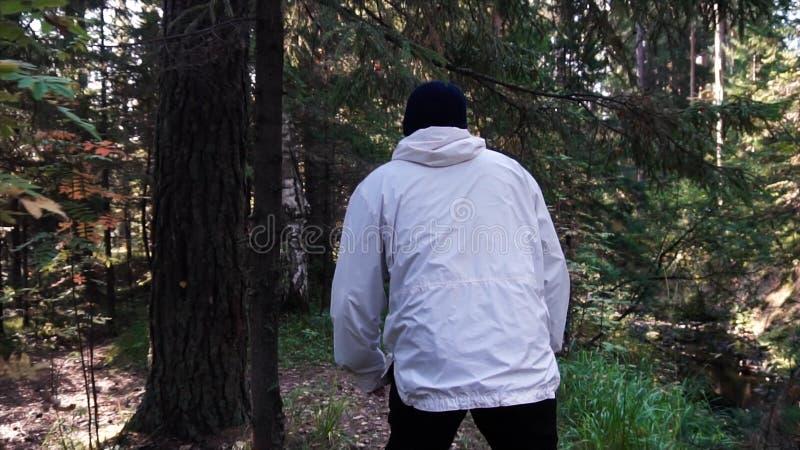 Junger Mann auf Camping-Ausflug Konzept der Freiheit und der Natur Ansicht des Mannes von der Rückseite gehend in Holz entlang We stockfotografie