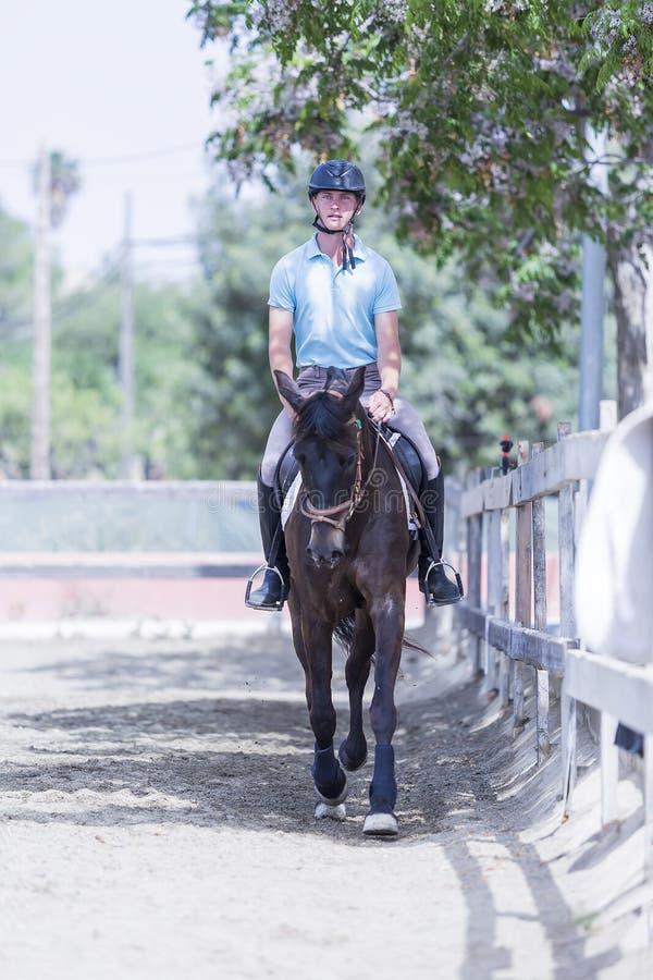Junger Mann, der ein Pferd reitet stockbilder