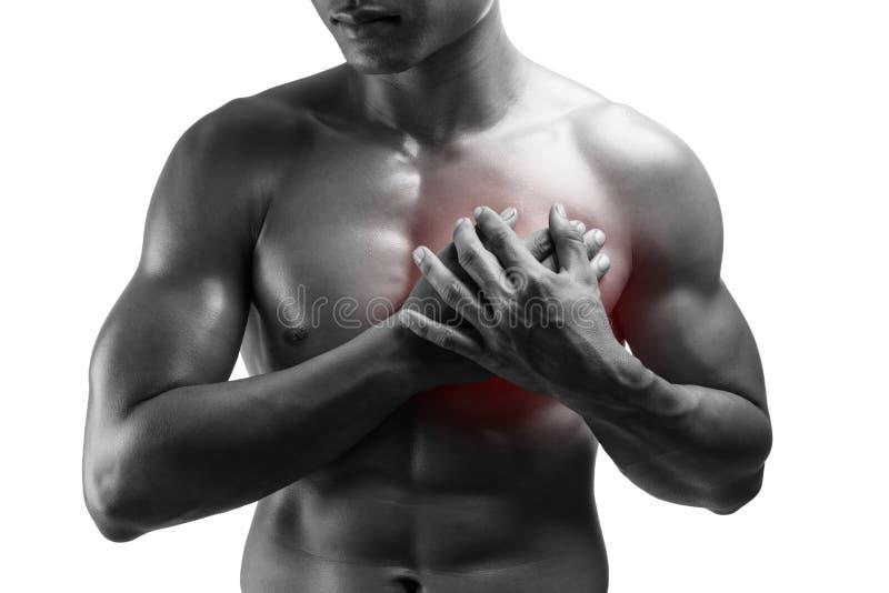 Junger Mann, der Herzinfarkt, Schmerz in der Brust, lokalisiert auf weißem Ba hat stockbilder