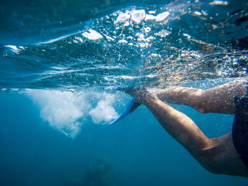 Junger Mann, der mit Maske und Flossen im klaren blauen Wasser schwimmt und schnorchelt stockfotografie
