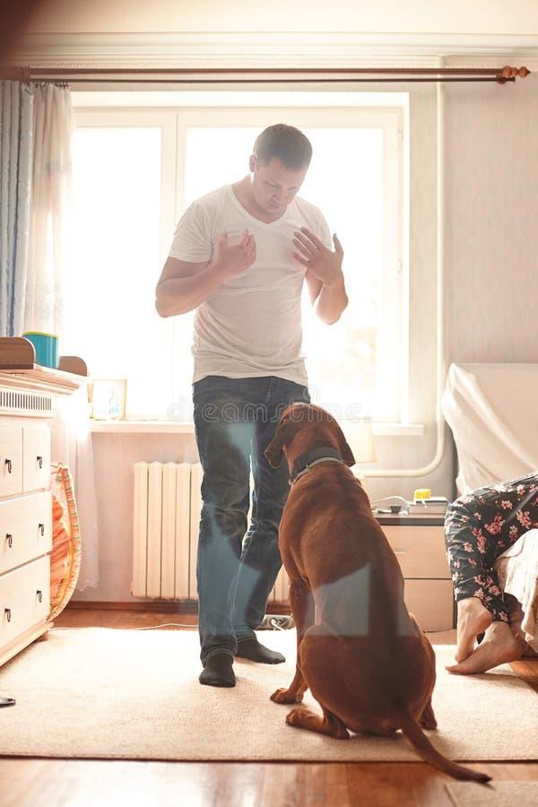 Junger Mann, der mit seinem Schoßhund in einer modernen Wohnung spricht lizenzfreies stockbild