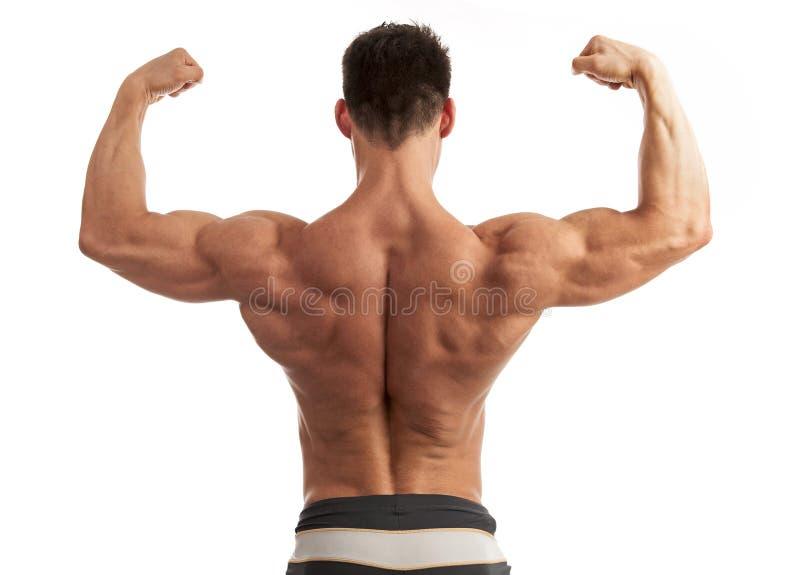 Junger Mann, der seinen Arm und Rückenmuskulatur biegt stockfoto