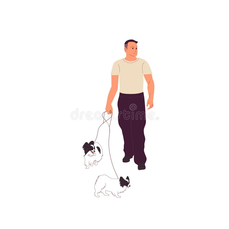 Junger Mann in der zufälligen Ausstattung geht mit zwei kleinen papillon Hunden auf einer Leine vektor abbildung