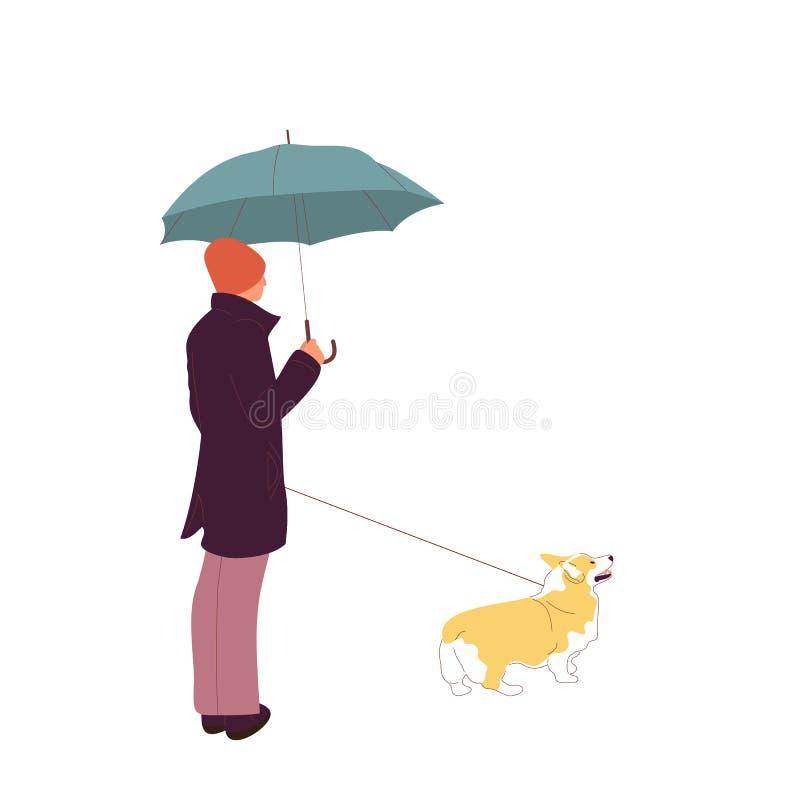 Junger Mann geht mit einem Corgihund auf einer Leine Getrennt auf wei?em Hintergrund Flacher Artkarikatur-Vorratvektor stock abbildung