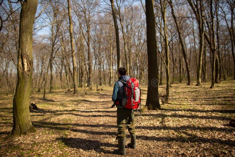 Junger Mann mit dem Rucksack, der in der Waldnatur und dem Konzept der k?rperlichen Bewegung wandert stockbilder