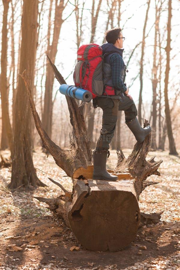 Junger Mann mit dem Rucksack, der in der Waldnatur und dem Konzept der k?rperlichen Bewegung wandert stockfotos