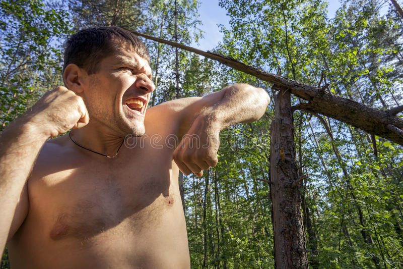 Junger Mann mit den geballten Fäusten auf dem Hintergrund von defekten Kiefern im Wald lizenzfreie stockbilder