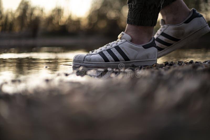 Junger Mann mit einem alten Paar Adidas Superstar Schuhe in einem Flusswasser stockbild