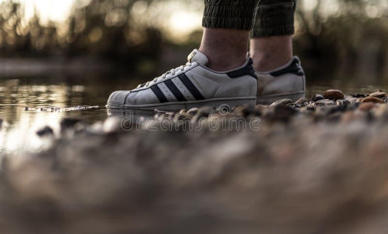 Junger Mann mit einem alten Paar Adidas Superstar Schuhe in einem Flusswasser lizenzfreie stockfotografie