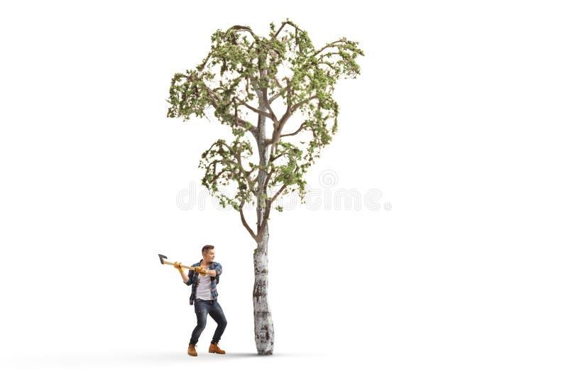 Junger Mann mit einer Axt, die einen Baum schneidet stockbilder