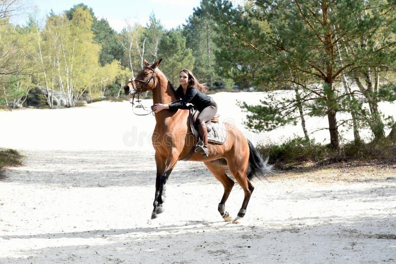 Junger Reiter im Wald stockfotos