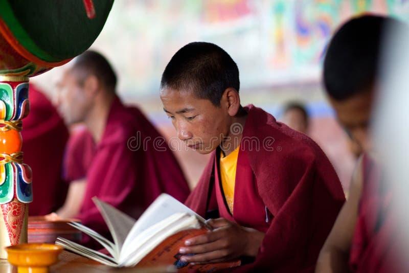 Junger tibetanischer buddhistischer Mönch, der in Thiksey-gompa betet (buddhistisches m stockbilder