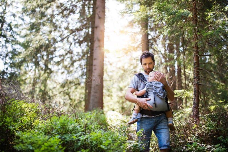 Junger Vater mit kleinem Jungen im Wald, Sommertag lizenzfreie stockfotos