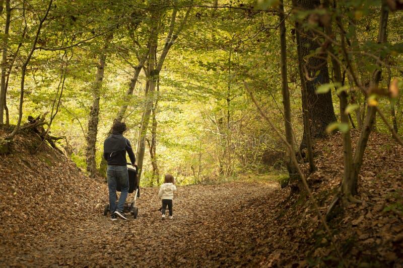 Junger Vati und kleines Baby, die zusammen im Wald herein geht stockbilder