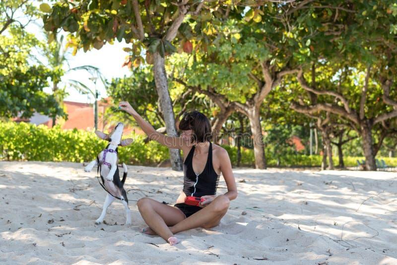 Junges attraktives Mädchen, das mit ihrem Schoßhund Spürhund am Strand von Tropeninsel Bali, Indonesien spielt Glückliche Momente stockfotos