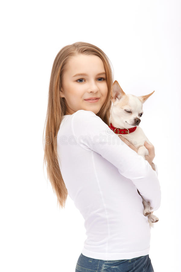 Junges attraktives Mädchen der blauen Augen mit HundeChihuahua stockfoto