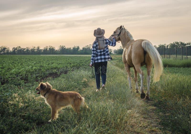 Junges blondes Mädchen in einem Hut und in einem karierten Hemd geht mit einem Pferd und einem Hund auf einem Bauernhof im Dorf lizenzfreie stockfotografie
