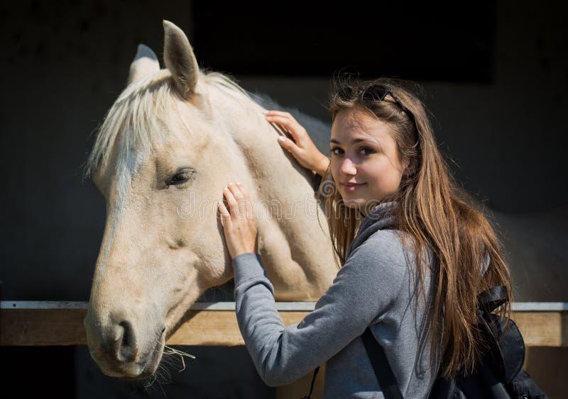 Junges brunette befreundendes Pferd lizenzfreie stockfotos