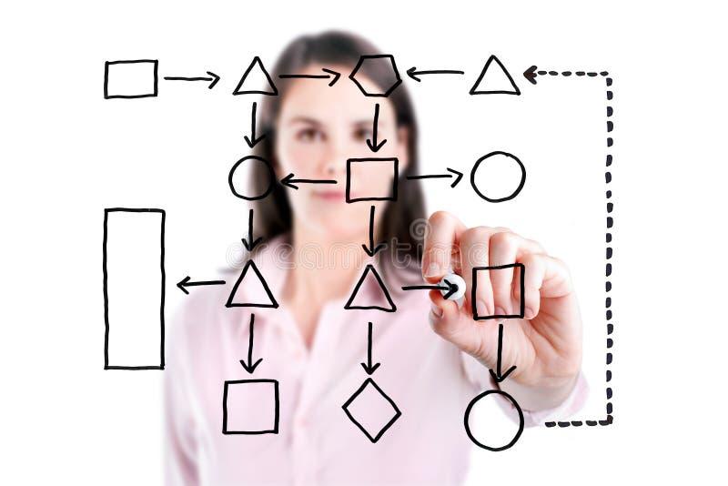 Junges Geschäftsfrau-Schreibprozessflussdiagrammdiagramm auf dem Schirm, lokalisiert. stockfoto
