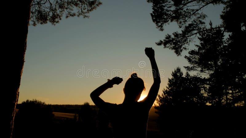 Junges glückliches Frauentanzen und Spaß im Park bei Sonnenuntergang haben stockbilder