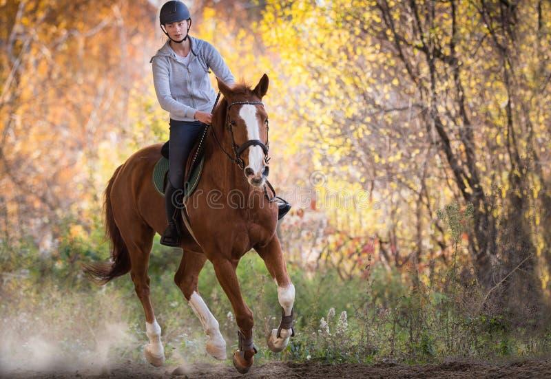 Junges hübsches Mädchen - ein Pferd mit hintergrundbeleuchteten Blättern hinten reiten lizenzfreie stockfotografie