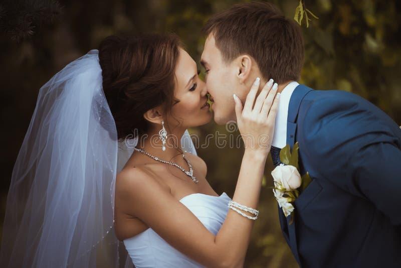 Junges Hochzeitspaarküssen stockfotos