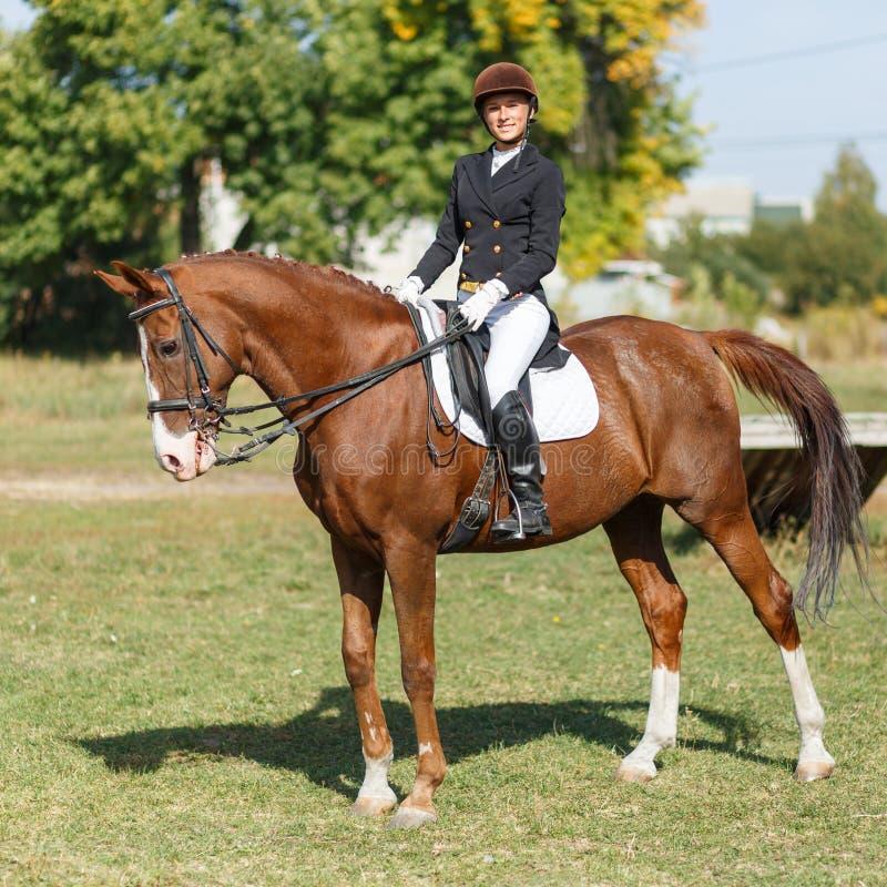 Junges Jugendlichereitpferd Dressage, das Pferdenspringen und Polopferde und -mitfahrer vector Schattenbilder stockfotografie