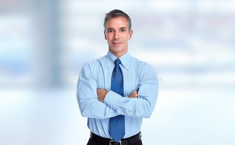 Junges lächelndes Geschäftsmannporträt stockbilder