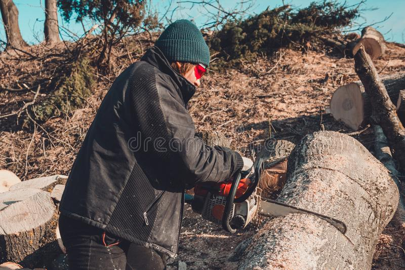 Junges l?ndliches M?dchen schnitt eine Baumkettens?ge in den Handschuhen, Kochbrennholz f?r Winter lizenzfreies stockbild