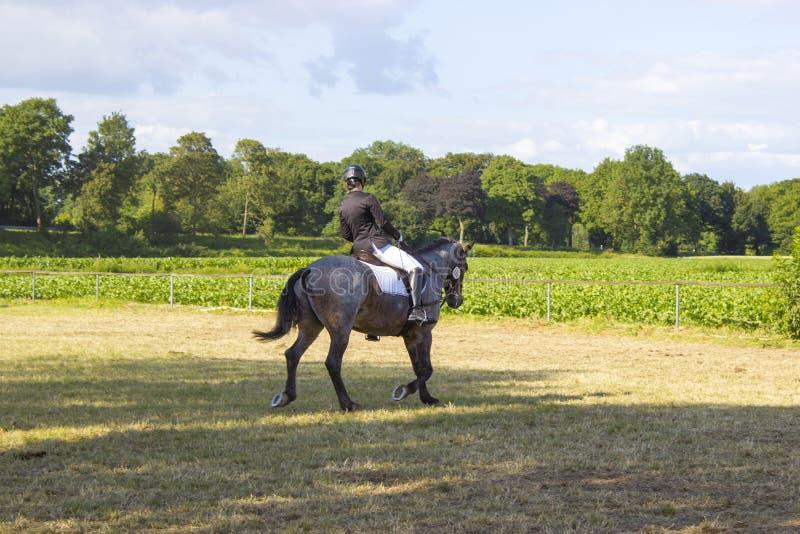 Junges Mädchen, das ein Pferd reitet stockfotos