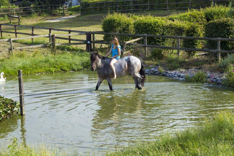 Junges Mädchen, das ein Pferd reitet lizenzfreies stockbild