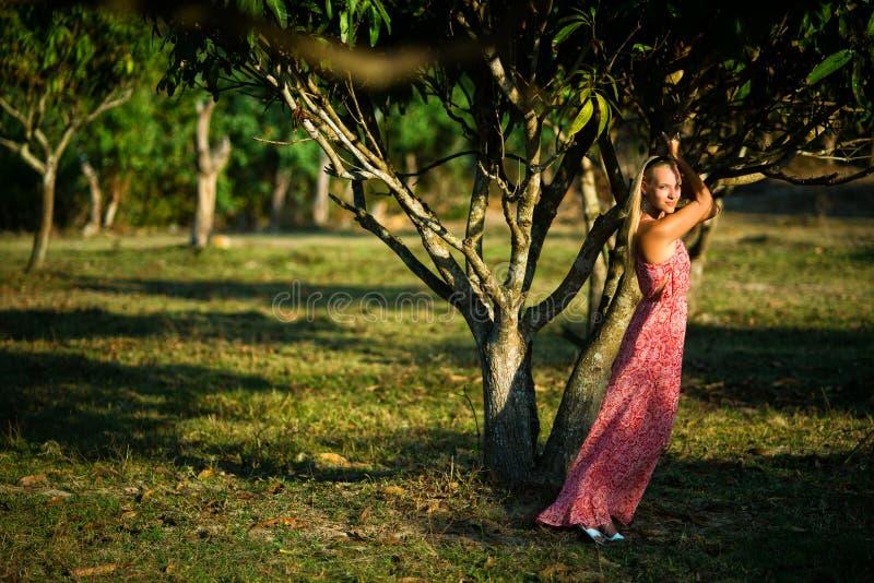 Junges Mädchen, das im rosa Kleid nahe tropischem Baum bei Sonnenuntergang aufwirft lizenzfreies stockbild