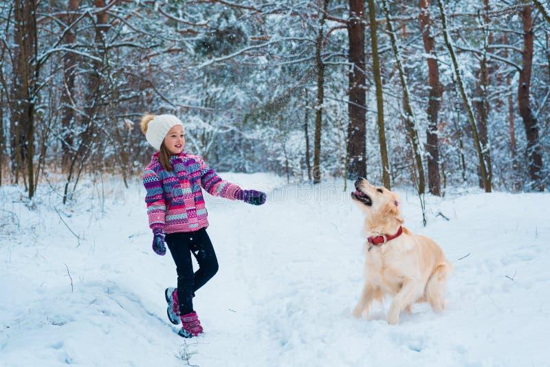 Junges Mädchen, das mit golden retriever auf Winterweg spielt lizenzfreie stockbilder