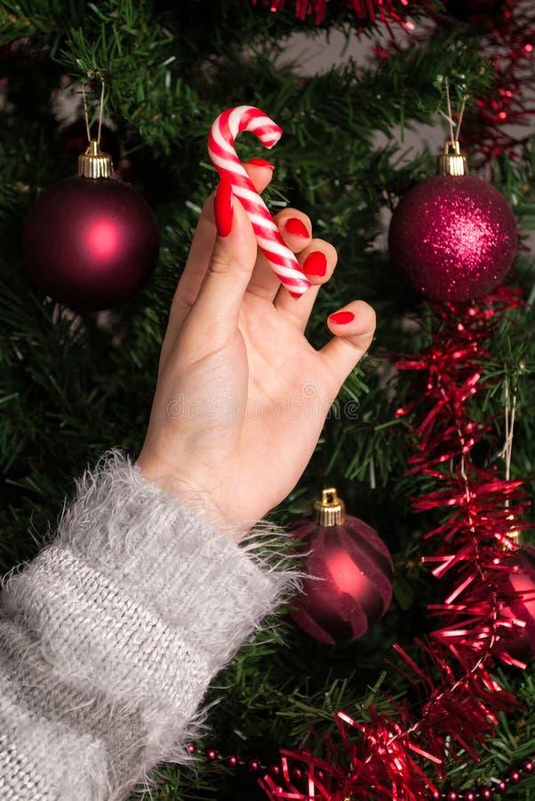 Junges Mädchen, das roten weißen Lutscher für Weihnachtsbaumdekoration hält stockfotos