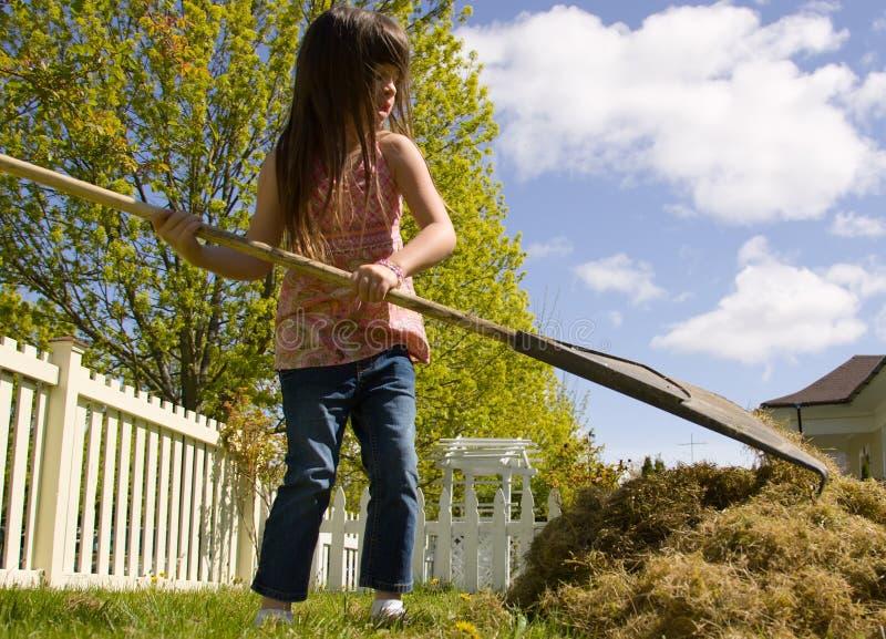 Junges Mädchen, das Yardwork tut stockfotos