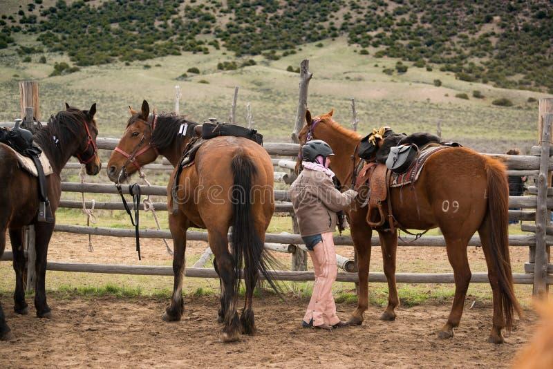 Junges Mädchen in der Hürde, die ihr Pferd für ein trailride sattelt lizenzfreies stockbild
