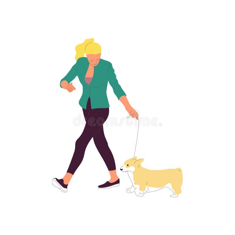 Junges Mädchen geht mit einem Hund auf einer Leine Getrennt auf wei?em Hintergrund Flacher Artkarikatur-Vorratvektor stock abbildung