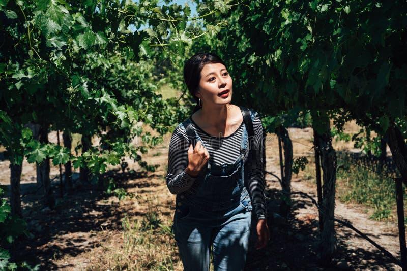 Junges Mädchen genießen Naturlebensstil in der Weinkellerei lizenzfreie stockfotografie