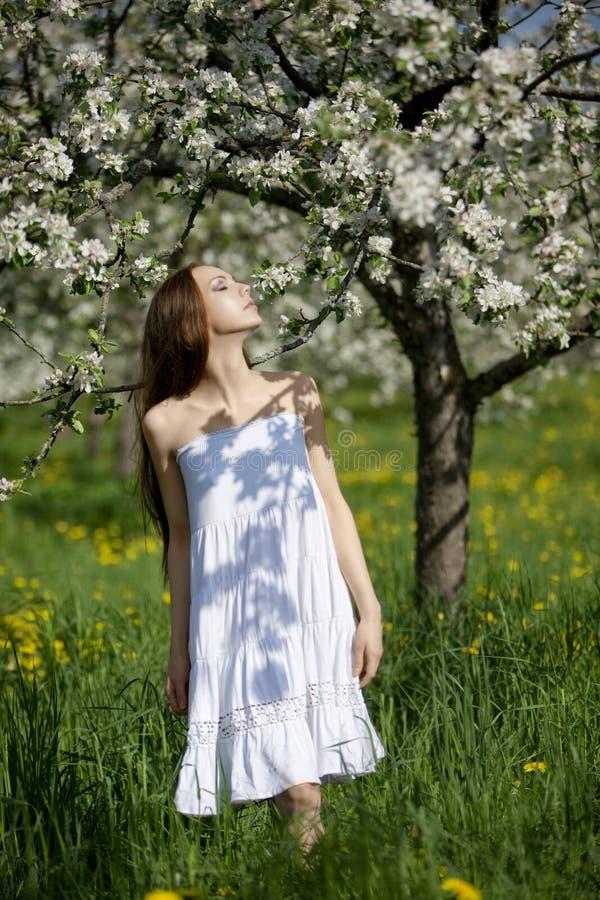 Junges Mädchen im weißen Kleid nahe Blüte stockbild
