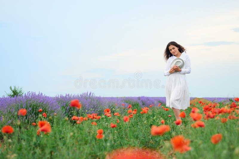 Junges Mädchen ist auf dem Lavendelgebiet mit roten Mohnblumenblumen, schöne Sommerlandschaft lizenzfreie stockfotografie