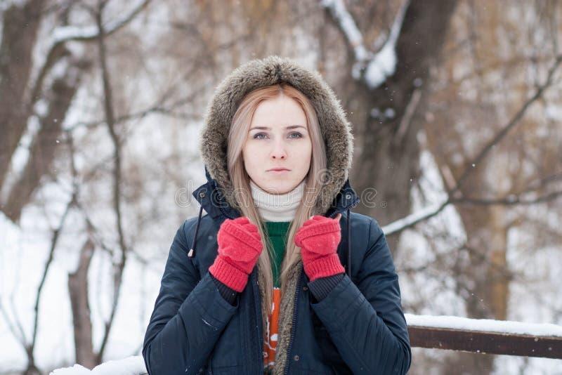 Junges Mädchen mit dem langen blonden Haar auf einem unscharfen Hintergrund eines Parks des verschneiten Winters stockfotos