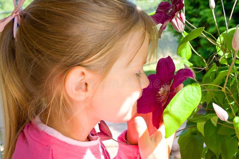 Junges Mädchen riechende Clematisblume. lizenzfreie stockbilder