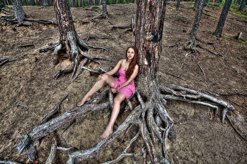 Junges Mädchen steht auf Natur, Kiefernwald, Landschaft still lizenzfreie stockfotografie