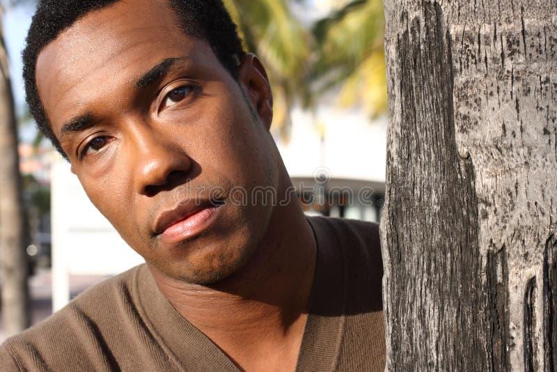Junges männliches Flüchtig blicken von hinten einen Baum lizenzfreie stockbilder