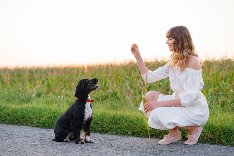 Junges nettes Mädchen, das ein Hundrusse-Spaniel ausbildet Schwarzes Hündchen sitzt zu ihrem Inhaber Sonnenuntergang in der Natur lizenzfreie stockfotos
