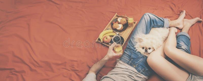 Junges Paar liegt im Bett mit Hund stockfotografie