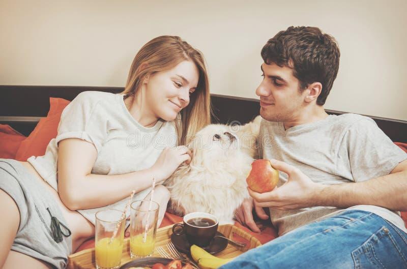Junges Paar liegt im Bett mit Hund stockbilder