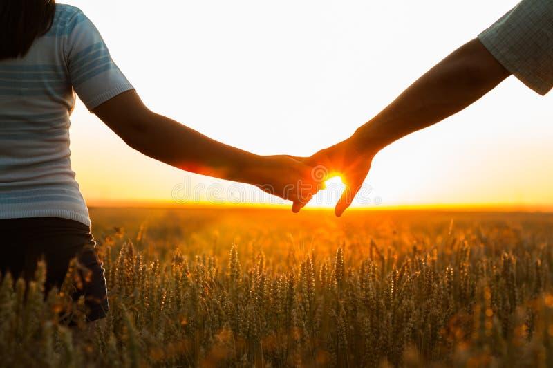 Junges Paarhändchenhalten auf dem Weizengebiet stockbilder