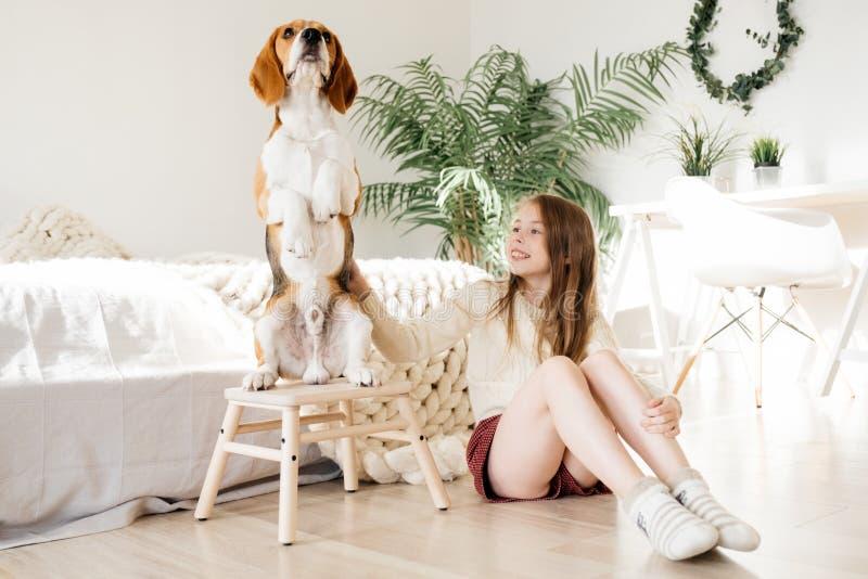 Junges schönes Kindermädchen, das Welpenspürhundhund umarmt Hund, der oben auf zwei Beinen steht Glück und Freundschaft, Mädchen, stockfotografie
