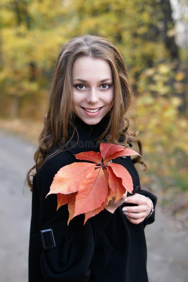 Junges schönes lächelndes Mädchen mit Blättern. stockfotografie